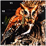 3drose Owl Wall Clock, 10 by 10-Inch