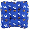 College Covers Kentucky Wildcats Floor Pillow
