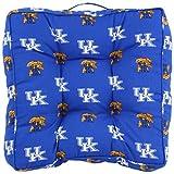 College Covers Kentucky Wildcats Floor Pillow