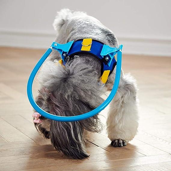 UNWSTYU - Arnés para Perros Ciegos para Mascotas con Anillo ...
