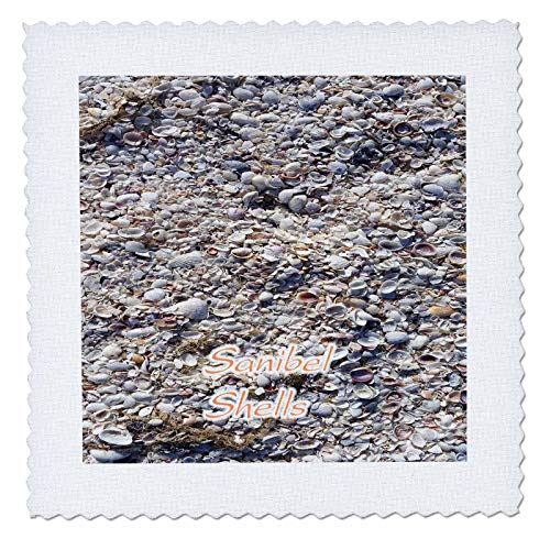 3dRose lens Art by Florene - Florida - Image of Closeup Of Famous Sanibel Island Shells With Words - 12x12 inch quilt square (qs_312611_4)