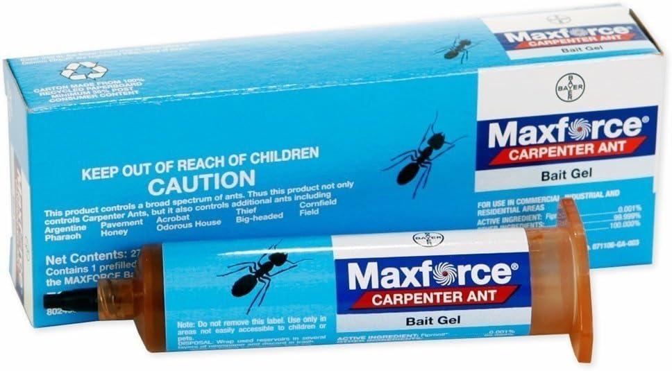 Amazon Com Carpenter Ant Control Kit Carpenter Ant Gel Bait