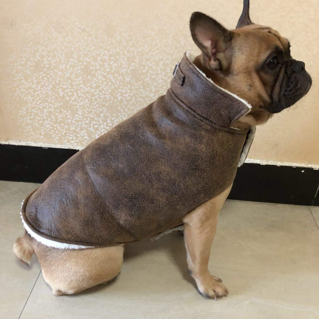 Doggy Costume Vestiti per cani, vestiti per animali domestici, vestiti a due gambe per la corrida, cappotto di cotone da combattimento, abbigliamento in pelle di bulldog (colore  Rosso vino, Taglia  M