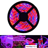 iNextStation LED Plant Grow Strip Light 16.4ft 5M Full Spectrum SMD 5050 Red Blue 5:1 Rope Light for Greenhouse Hydroponic Plant (Red:Blue=5:1)