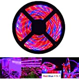 LED Strip Lights, OUEVA 16.4ft/5M Plant Light Strip SMD 5050 Waterproof Grow Light Full Spectrum Rope lights for Aquarium Greenhouse Hydroponic Plant, Garden Flowers Veg Grow Light DC 12V (5:1)