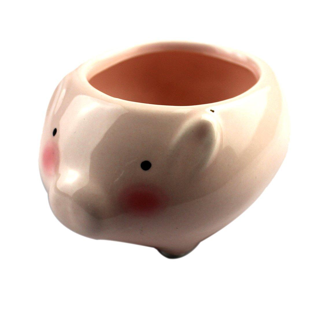 (One Size, Pig) - Animals Ceramic Flowerpot Planter Cute Succulent-Pig B06XRB1YHL 豚 One Size