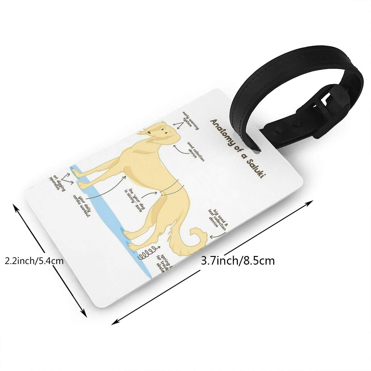 Anatomy Of A Saluki Luggage Tags Suitcase Labels Bag Travel Accessories Set of 2