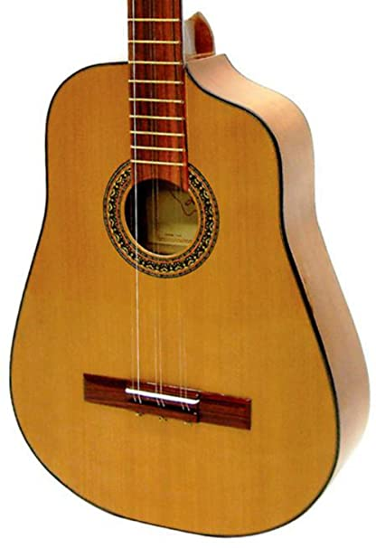 Amazon.com: Paracho Elite Guitars Havana Cuban 6 String Tres Natural ...