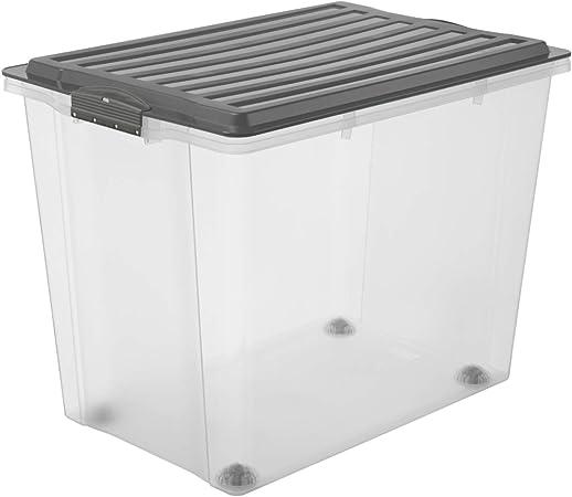 Rotho Compact, Caja de almacenamiento 70l con tapa y ruedas, Plástico PP sin BPA, gris, transparente, A3, 70l 57.0 x 39.5 x 43.5 cm: Amazon.es: Hogar