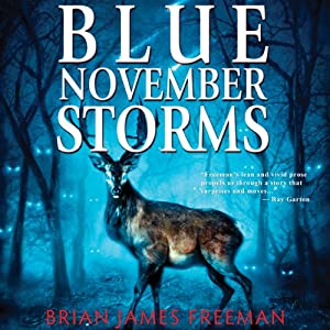 Blue November Storms (Novella) Audiobook