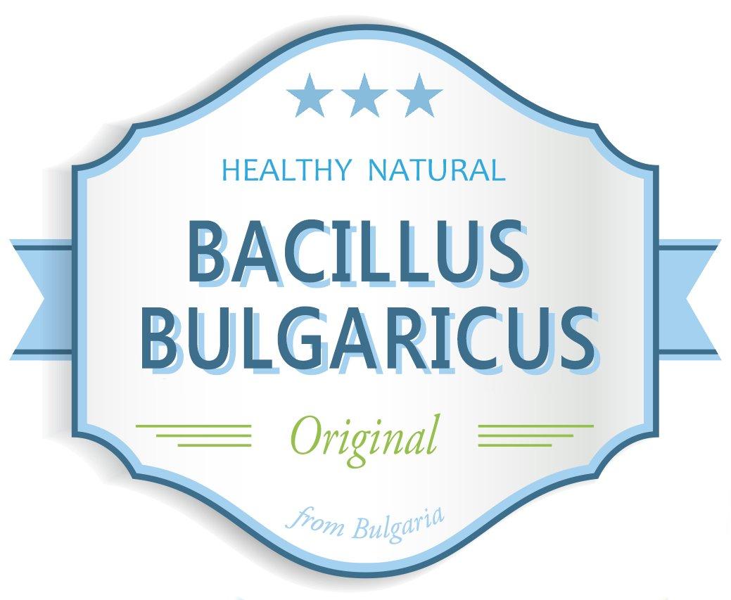 Bulgarian Yogurt Starter (Makes 2 Gal / 8 L) by Bacillus Bulgaricus (Image #3)
