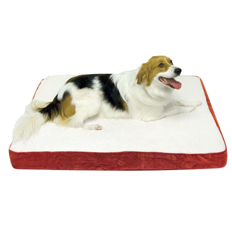 Extra large orthopedic dog beds best price - Amazon Com Happy Hounds Oscar Orthopedic 36 By 48 Inch Dog Bed Large Crimson Pet Beds Pet Supplies
