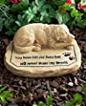 CTD Store Pet Memorial Stones -Keep the memory of a lost pet alive in your heart with this Pet Memorial Stone …