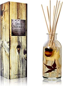 Urban Naturals Autumn Harvest Scented Oil Reed Diffuser | Fall Home Decor with Real Leaves & Botanicals | Creamy Pumpkin Pie, Nutmeg, Maple & Vanilla