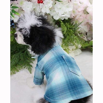 Pequeña camisa de la boda del perro, traje de la corbata de ...