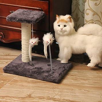 Queta Cat Supplies - Marco de Escalada para Gatos, Gatos, Gatos, Gatos y Gatos: Amazon.es: Informática