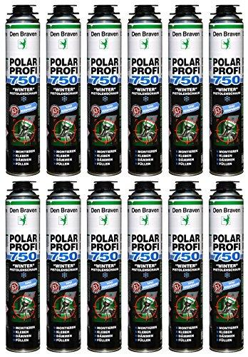Den Braven Espuma de poliuretano Invierno Polar profesional 1 K B2 750 ml spez Espuma de
