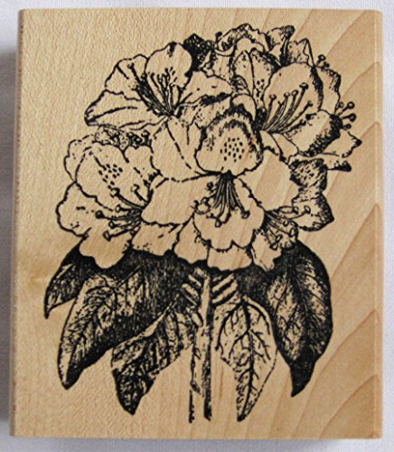 natures-blessings-fine-art-stamps-rhododendron