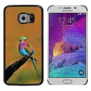 Be Good Phone Accessory // Dura Cáscara cubierta Protectora Caso Carcasa Funda de Protección para Samsung Galaxy S6 EDGE SM-G925 // orange vibrant colorful bird summer