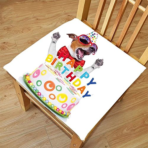 Nalahome Set of 2 Waterproof Cozy Seat Protector Cushion Birthday Decorations for Kids Party Dog at Suprise Birthday Party with Cone Hat and Glasses Multicolor Printing Size - Printing Sunglasses Machine