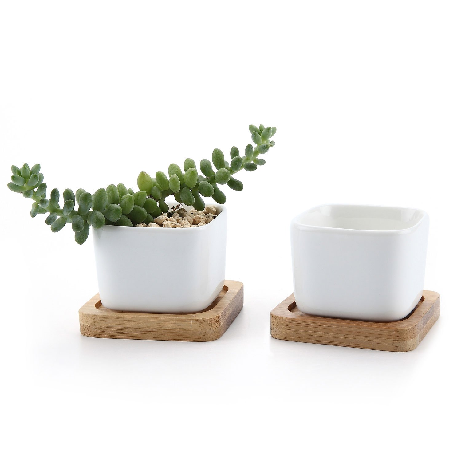 T4U 2 Inch Ceramic White Mini Square Succulent Plant Pot Cactus Plant Pot with Free Bamboo Tray Package 1 Pack of 2