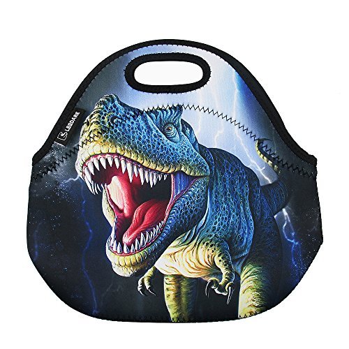 LBBDARE Lunch Bag Thermal Bags Outdoor Picnic Meal Package for Boys Girls Women -