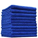 THE RAG COMPANY (10-Pack) 16 in. x 16 in. Professional Edgeless 70/30 Blend 420 GSM Dual-Pile Plush Microfiber Auto Detailing Towels Creature Edgeless (Royal Blue)