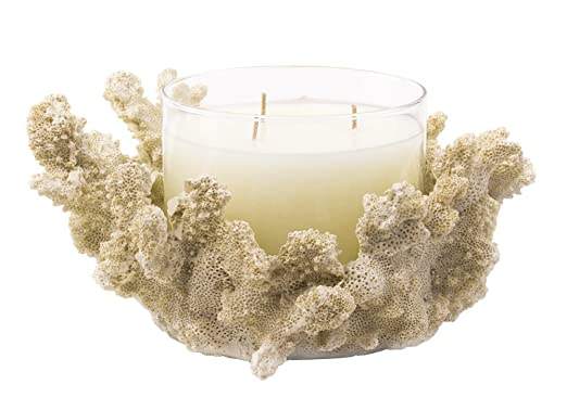 Christmas Tablescape Decor - Ivory coral centerpiece candle holder with 3-wick candle by Red Co.