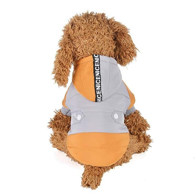 Ropa para Mascotas,Dragon868 liquidación Ventas Invierno Caliente suéter Gruesa Chaqueta Abrigos para Perros de Mascota: Amazon.es: Ropa y accesorios