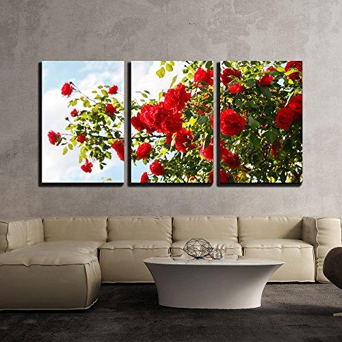 Red Garden Framed - 2