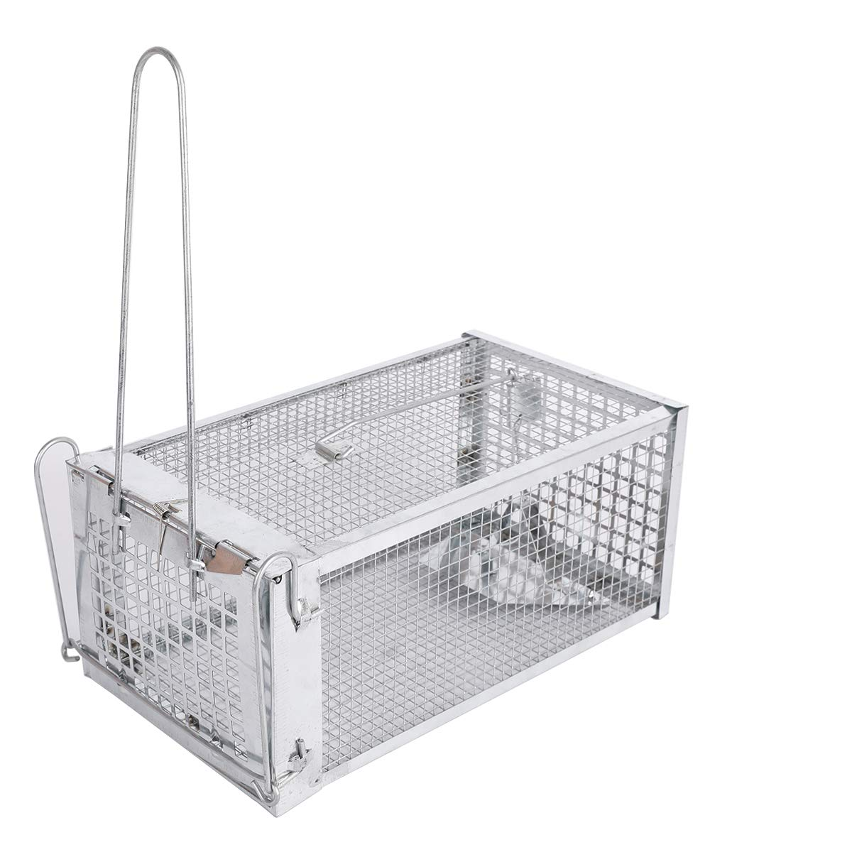 ALLRoad Live Animal Humane Trap Catch Trap Catch Chipmunks,Rats Similar Sized Catch for Indoor and Outdoor by ALLRoad