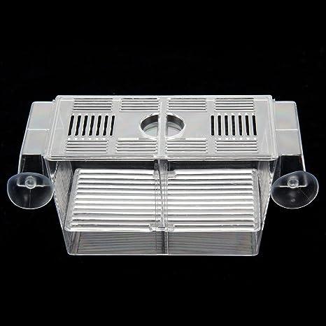 Zanteca - Caja de plástico flotante para peces, peces, peceras, peceras, peceras