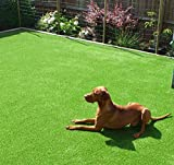 GT LIFE Artificial Grass for Dogs Synthetic Turf Artificial Lawn Rug with Drainage Holes&Rubber Backing, Blade Height 1.2inch Indoor/Outdoor Landscape (3.3'x5'=16.5 Sq ft, Autumn Lawn)