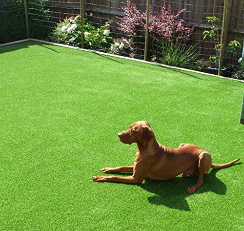 GT LIFE Artificial Grass for Dogs Synthetic Turf Artificial Lawn Rug with Drainage Holes&Rubber Backing, Blade Height 1.2inch Indoor/Outdoor Landscape (3.3'x5'=16.5 Sq ft, Autumn Lawn) by GT LIFE