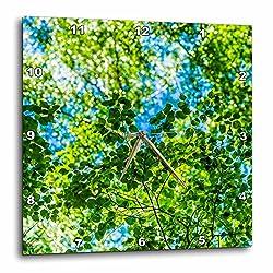 3dRose Alexis Photography - Seasons Summer - Sunlit carpet of linden tree foliage - 15x15 Wall Clock (dpp_265612_3)