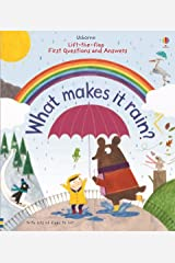 What Makes it Rain? (Lift the Flap First Questions and Answers) Board book