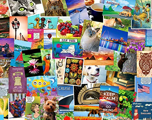 (SAMPLER POSTCARD SET of 20 cards. Post card variety pack of random assortment of 20 mixed sample postcards. Made in USA.)