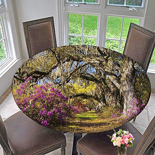 Mikihome Simple Modern Round Table Cloth Decor Flowers in Charleston South Carolina Azalea Blooms Oak Tree Violet Purple for Daily use, Wedding, Restaurant 40