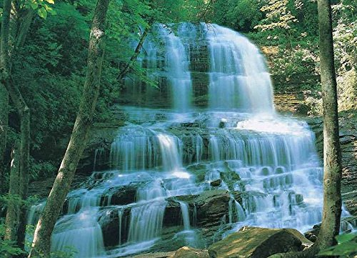 - Huge Photo Wall Mural 12 Feet 6 Inch Wide X 9 Feet High Covers An Entire Wall! Tropical Beaches, Waterfalls, Mountains, Nature (Pearsons Falls)