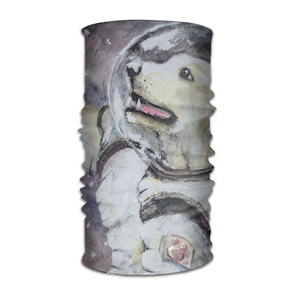 Magic Headwear Dogs Puppy Outdoor Scarf Headbands Bandana Mask Neck Gaiter Head Wrap Mask Sweatband
