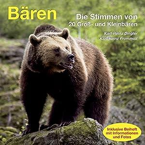 Bären Hörbuch
