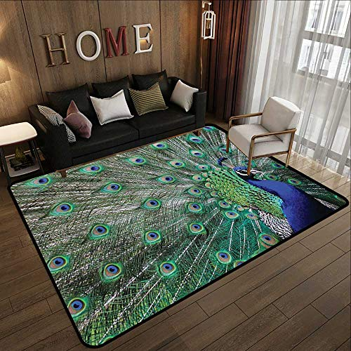 Small Rugs,Peafowl Feathers Decor Collection,Majestic Peacock Picture Pattern,Green Blue Brown Olive 47