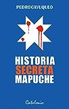 Historia secreta mapuche (Spanish Edition)
