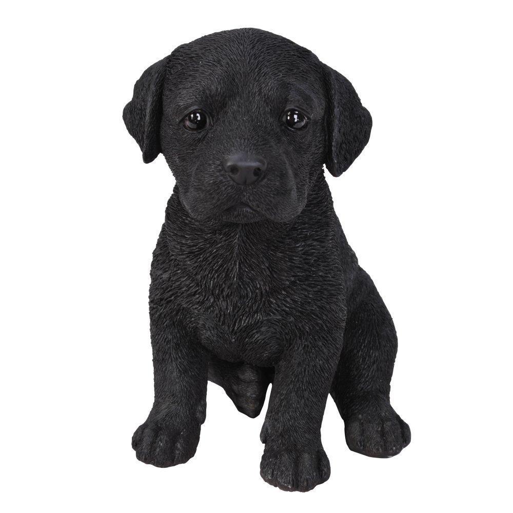 Black Labrador Puppy Pet Pal by Vivid Arts