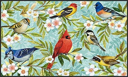 toland-home-garden-bird-collage-18-x-30-inch-decorative-usa-produced-standard-indoor-outdoor-designe