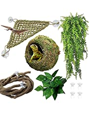 Hamiledyi Reptile Moss Cave Hide,Gecko Habitat Hammock Green Moss Accessories Plastic Terrarium Plant Vines for Small Bearded Dragon,Snakes,ChameleonClimbing and Sleeping