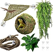 Hamiledyi Reptile Moss Cave Hide,Gecko Habitat Hammock Green Moss Accessories Plastic Terrarium Plant Vines fo