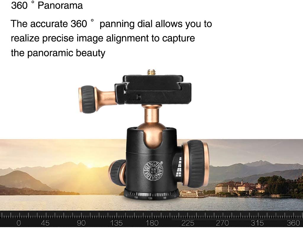 XIXI Mini Compact Tripod,Portable Travel Tabletop Tripods Lightweight Aluminu Alloy 360 Degree Ball Head with Carry Bag Compatible Cell Phone Camera DSLR SLR