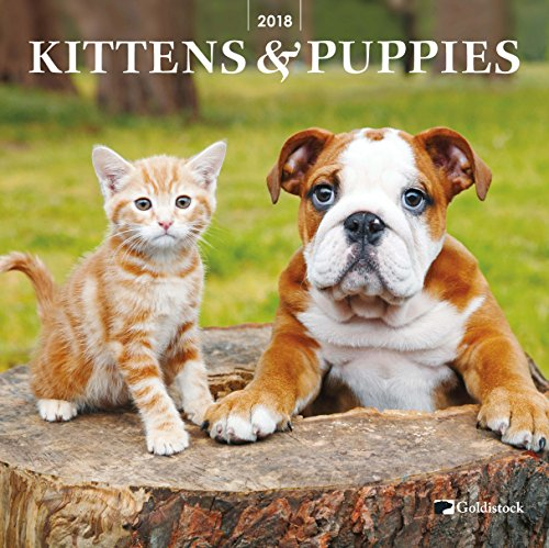 "Goldistock ""Kittens & Puppies"" Eco-friendly 2018 Large Wall Calendar - 12"" x 24"" (Open)"
