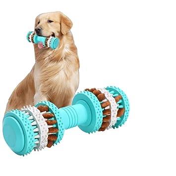 Stop Pequeños Para Chew Bear Squeak Vivi Y Aburrimiento Toys Con Interactive Puppy Agilidad Medianos Toy Fill Perros kZTXiOPu